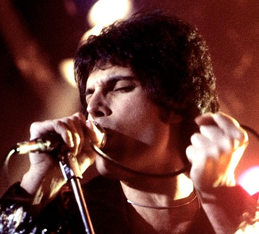 The Passion Of Freddie